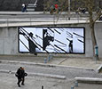 graphic-surgery | lemur | billboard | paris (12 votes)