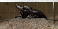 roa | gent | belgium (26 votes)