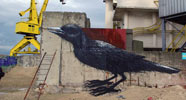 roa | bird | gent | belgium (36 votes)