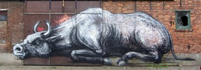 roa | doel | toro | belgium (14 votes)