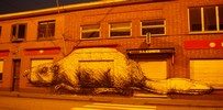 roa | doel | night | belgium (30 votes)