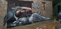 roa | dulk | bird | doel | belgium (31 votes)
