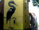 roa | gent | bird | belgium (19 votes)