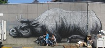 roa | gent | belgium (18 votes)