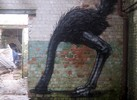 roa | gent | belgium (9 votes)