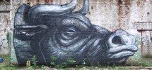 roa | gent | belgium (24 votes)