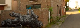 roa | rabbit | doel | belgium (18 votes)