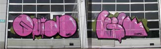 guido | gmcrew | pink | belgium (6 votes)