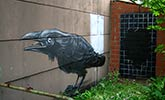 roa | bird | belgium (18 votes)