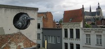 roa | bird | belgium (32 votes)