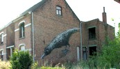 roa | bird | doel | belgium (10 votes)