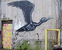 roa | bird | g-b | belgium (18 votes)