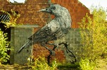 roa | bird | gent | belgium (17 votes)