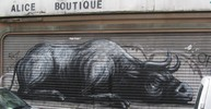 roa | afiler | bruxelles | shutters | belgium (25 votes)