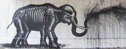 roa | elephant | drips | black | belgium (85 votes)