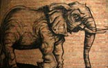 roa | elephant | belgium (23 votes)