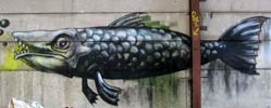 roa | fish | belgium (71 votes)