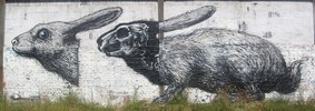 roa | rabbit | belgium (18 votes)