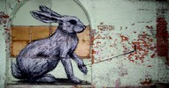 roa | rabbit | gent | belgium (18 votes)