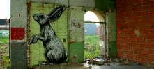roa | rabbit | gent | belgium (19 votes)