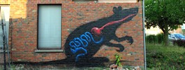 roa | rat | doel | belgium (14 votes)