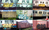 geg | orc | train | saopaulo | brazil (42 votes)