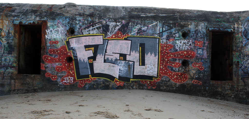 fleo | drgs | capbreton | blockhaus | france