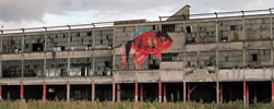 ipin | fish | big | villeurbanne | france (86 votes)