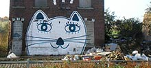 lem | roubaix | cat | france (43 votes)