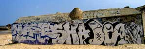 nasty | shade | dea | kase | blockhaus | capbreton | france (8 votes)