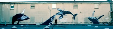 sr-x | koln | whale | germany (47 votes)