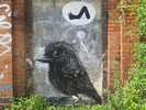 roa | 1010 | bird | berlin | germany (26 votes)