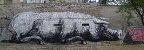 roa | pig | berlin | germany (11 votes)