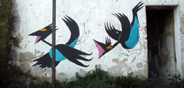 arp | bird | napoli | italy (27 votes)