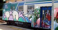 pink | kaio | grebe | train | italy (21 votes)
