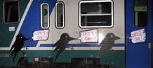 elfo | bird | train | italy (22 votes)