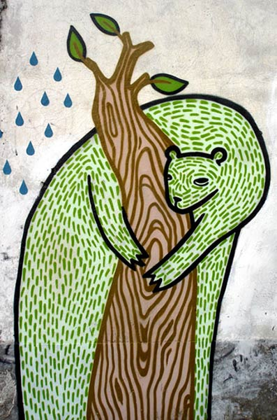 news | bear | green | mexico
