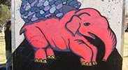 uneg | elephant | mexico (19 votes)