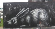 roa | rabbit | amsterdam | netherlands (12 votes)