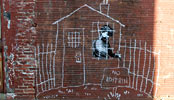 banksy | chalk | boston | usa | north-america (23 votes)