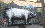 roa | pig | williamsburg | nyc (25 votes)