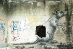 roa | rat | paris (25 votes)