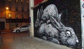 roa | shutters | rabbit | night | paris (17 votes)
