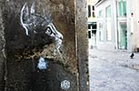 c215 | cat | stencil | paris (47 votes)