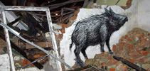 roa | poland (15 votes)