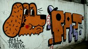 felto | dog | oik | fat-gruz | poland (45 votes)