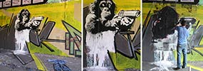 pener | spectrumcrew | monkey | poland (33 votes)