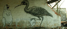 roa | mrufig | bird | poland (23 votes)