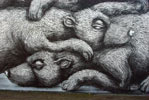 roa | bear | warsaw | poland (24 votes)
