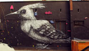 roa | bird | poland (22 votes)